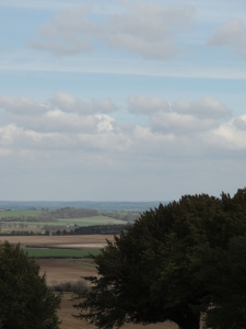 View from Danebury