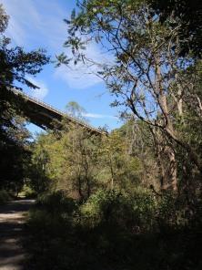 Another angle, same bridge