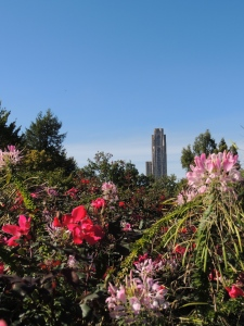 Cathedral of Learning, Pittsburgh