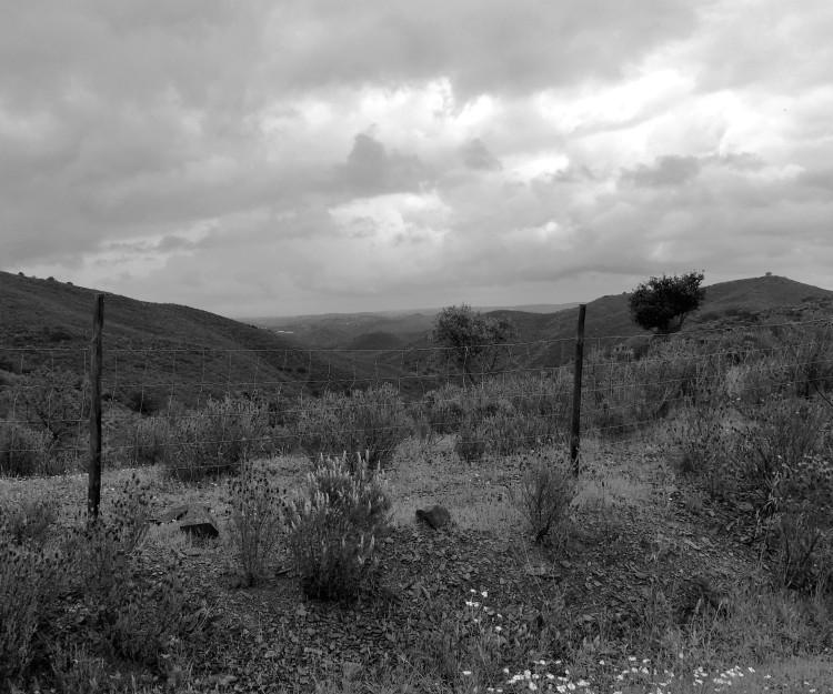 In the Algarvian hills