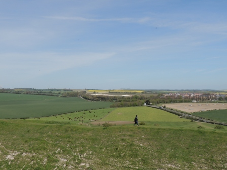 Looking towards Stonehenge