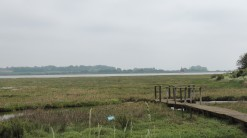 North Saltmarsh