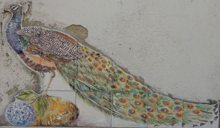 Tiled feathers