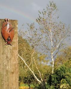 bonus-rainbow