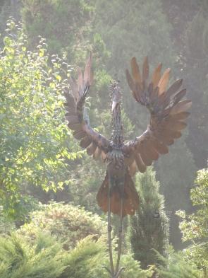 michael-kusz-herons-above