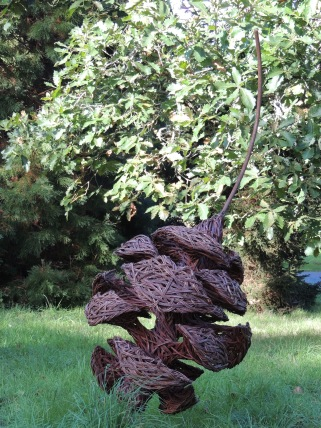 pine-cones-in-willow