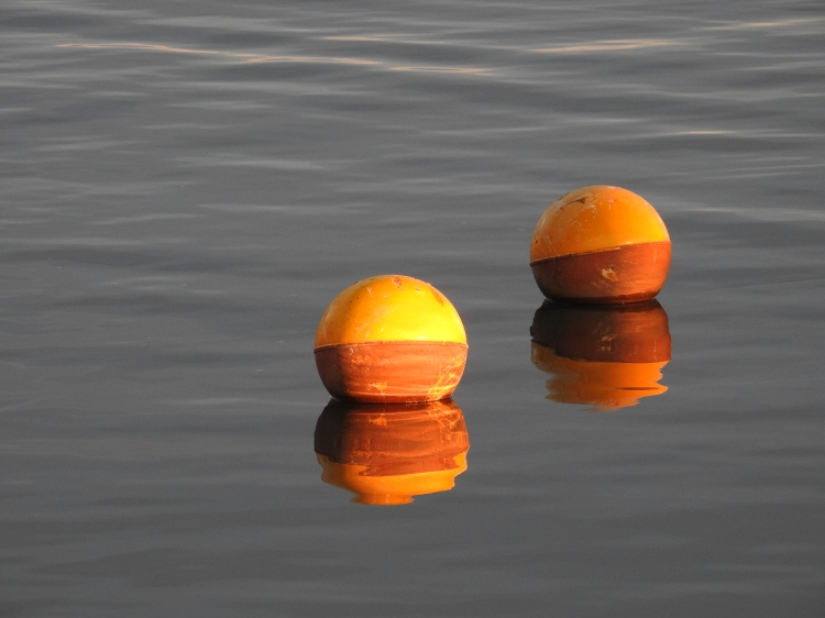 Buoys in Olhão marina