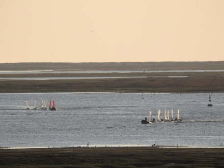 Can never stop watching the Ria Formosa