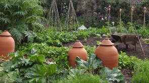 Royal Kitchen Gardens
