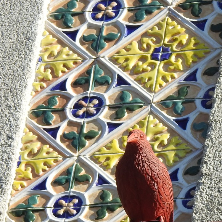 Porto Pigeon