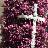 Pink flower torches