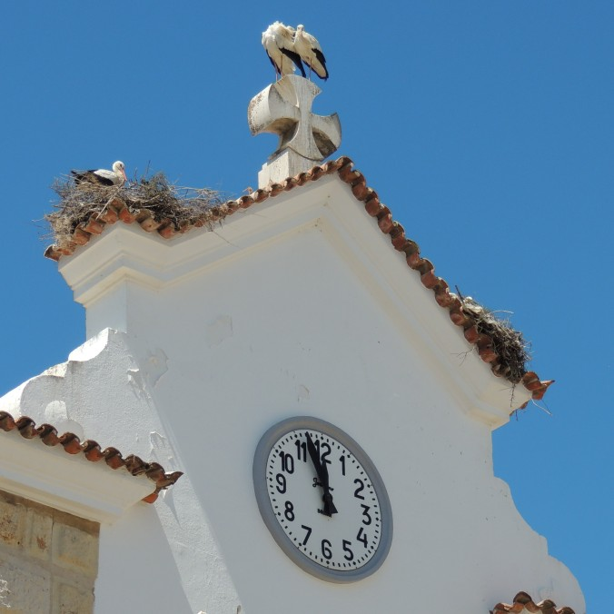 Storks with a Clock