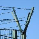 Algarvian barbed wire