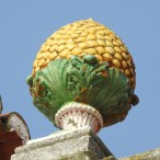 Pineapple on a roof