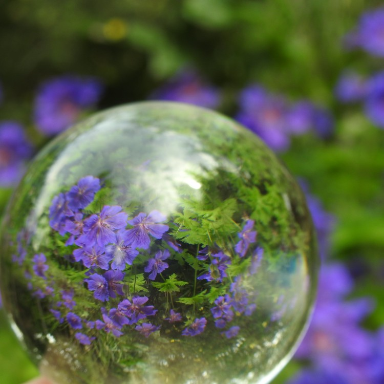 In the garden with a lensball