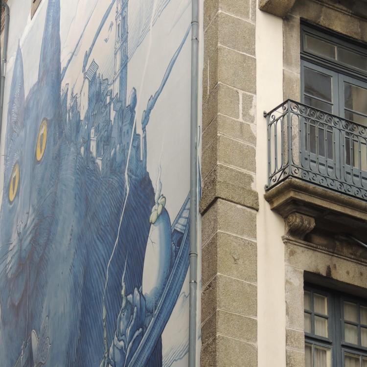 Blue cat Porto