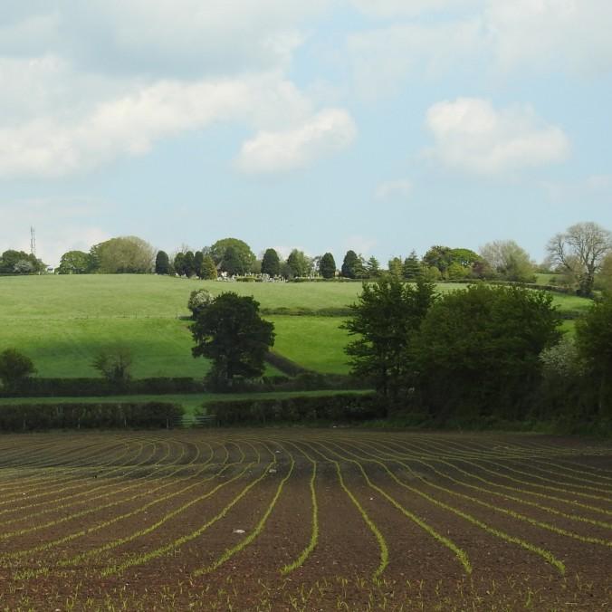 Somerset Lines