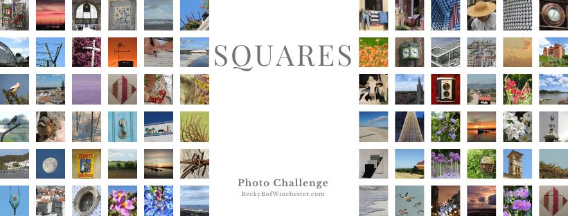 Squares header Logo!