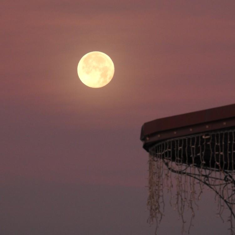 19 moonlight