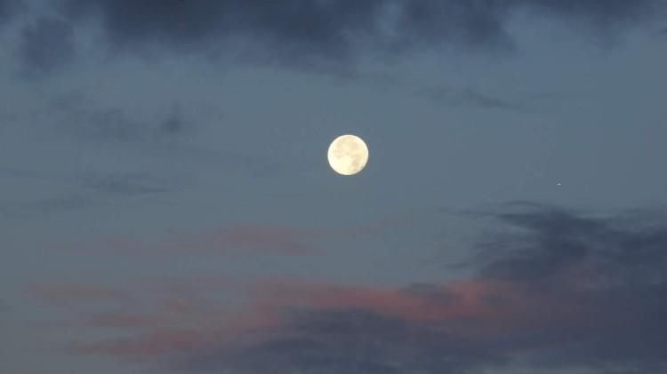 25 moonlight header 2